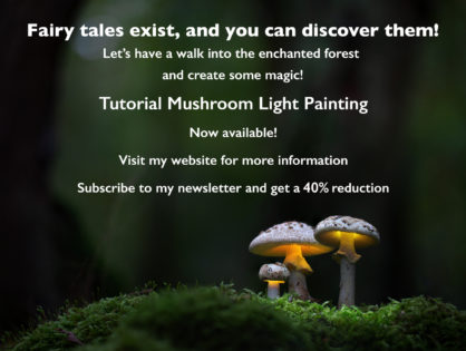 RELEASE: Mushroom Light Painting