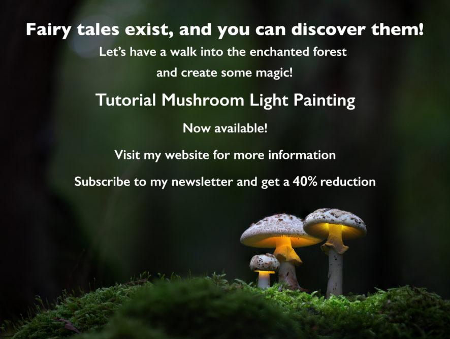 RELEASE: Mushroom Light Painting